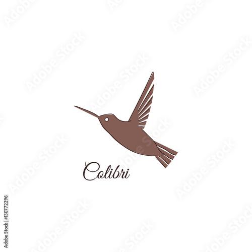 colibri logo hummingbird identity design template vector