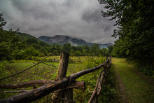 Old Rustic Fence Surrounded By...