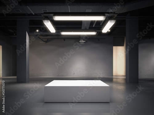 Fotografie, Obraz  Modern gallery space with bright showcase. 3d rendering