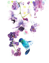 Orchids The Tropical Flowers W...