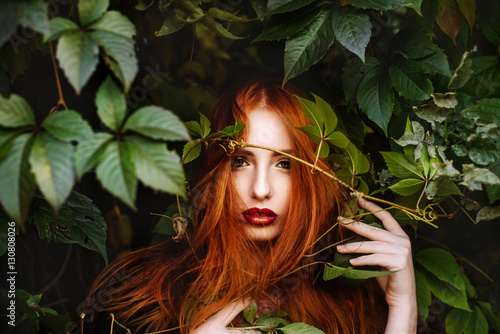 fototapeta na ścianę the red-haired girl in the leaves of wild grapes