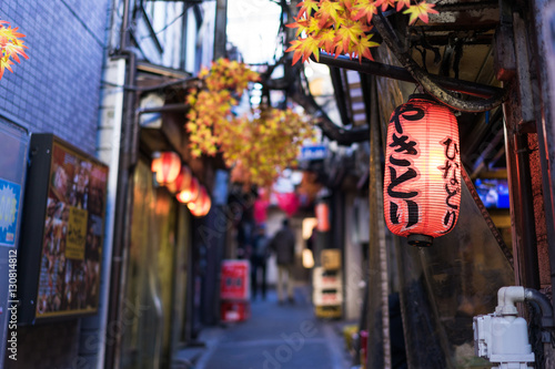 Restaurant street decorated with red leaf in Tokyo Canvas Print