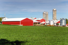 Farm With Red Barns And Silos ...