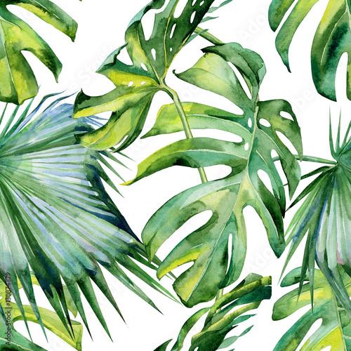 ilustracja-tropikalna