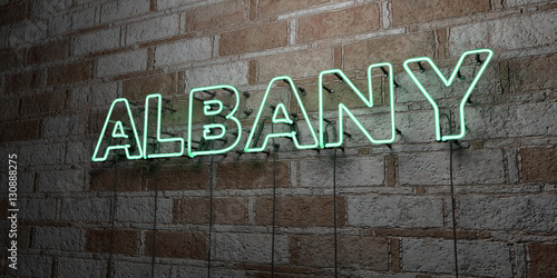 Valokuva  ALBANY - Glowing Neon Sign on stonework wall - 3D rendered royalty free stock illustration