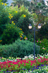 Fototapeta street lighting of lanterns in park flowers