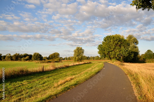 Foto op Aluminium Blauw Weg zwischen den Feldern