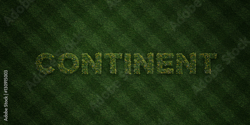 Fotografie, Tablou  CONTINENT - fresh Grass letters with flowers and dandelions - 3D rendered royalty free stock image