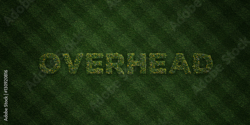 Fotografie, Obraz  OVERHEAD - fresh Grass letters with flowers and dandelions - 3D rendered royalty free stock image