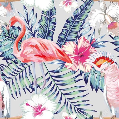 swiatlo-papugi-orchidea-hibiskusa-flamingo