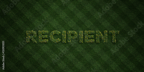 Fotografie, Obraz  RECIPIENT - fresh Grass letters with flowers and dandelions - 3D rendered royalty free stock image