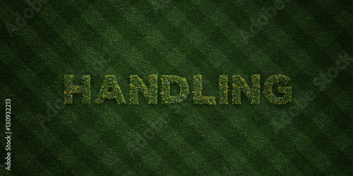 Fotografie, Obraz  HANDLING - fresh Grass letters with flowers and dandelions - 3D rendered royalty free stock image