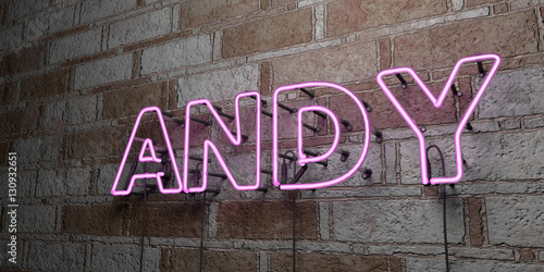 ANDY - Glowing Neon Sign on stonework wall - 3D rendered royalty free stock illustration Canvas Print