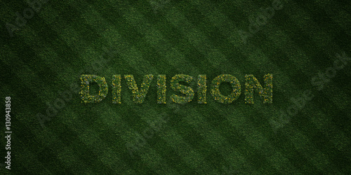 Photo  DIVISION - fresh Grass letters with flowers and dandelions - 3D rendered royalty free stock image