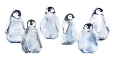 Set Of Six Little Penguins. Isolated On White Background. Watercolor Illustration.