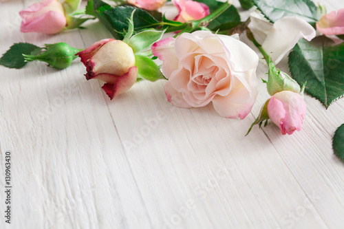 Valentine day background, rose flowers on white wood