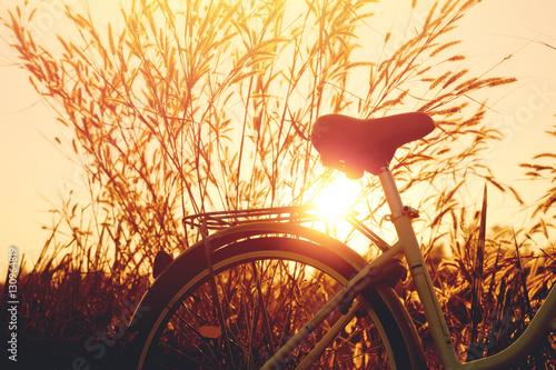 Deurstickers Fiets vintage bike with beautiful landscape image on sunset.