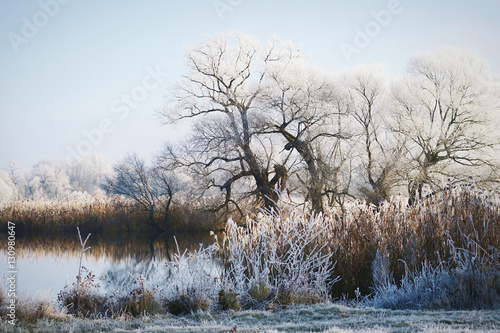 Fotobehang Lichtblauw hoarfrost landscape on Havel River (Havelland, Germany)