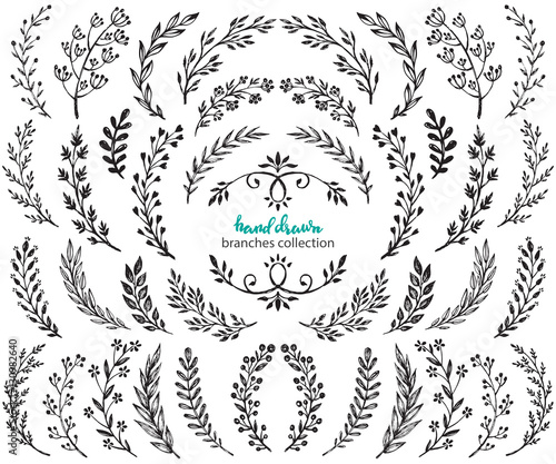 Photo  Big set of hand drawn vector flowers and branches with leaves, berries