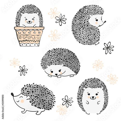 Cuadros en Lienzo Set of cute watercolor hedgehogs isolate on white
