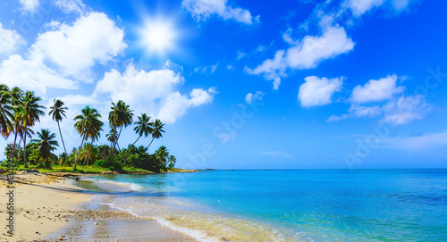 Photo sur Aluminium Tropical plage paradise tropical beach