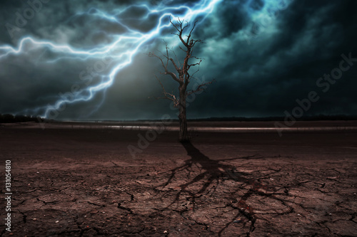 Spoed Fotobehang Onweer Land to the ground dry cracked and dry tree. With lightning stor