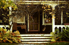 Veranda Of An Abandoned House In The Garden. Vintage Photo. Autumn. Old Wooden Veranda Overgrown With Vegetation