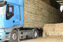 A Farm Truck In Rural Country For Staw Transportation