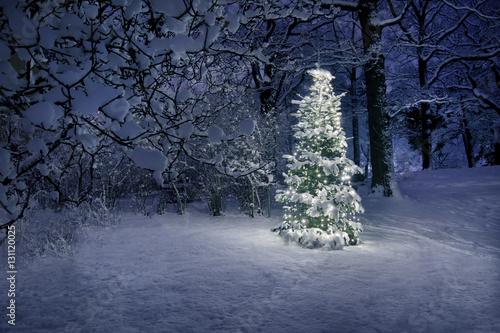 Christmas Tree in Snow Canvas-taulu