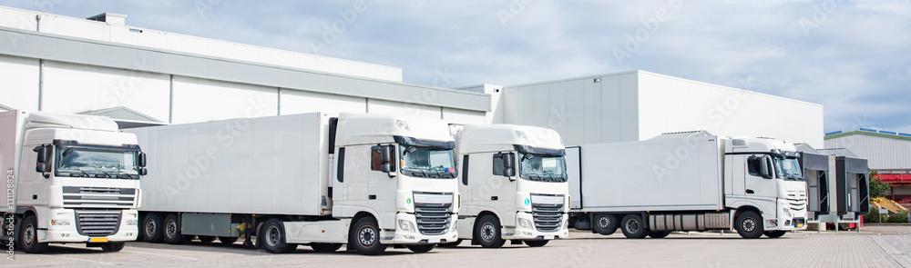 Fototapeta LKW - Spedition, vier geparkte weiße Sattelschlepper nebeneinander