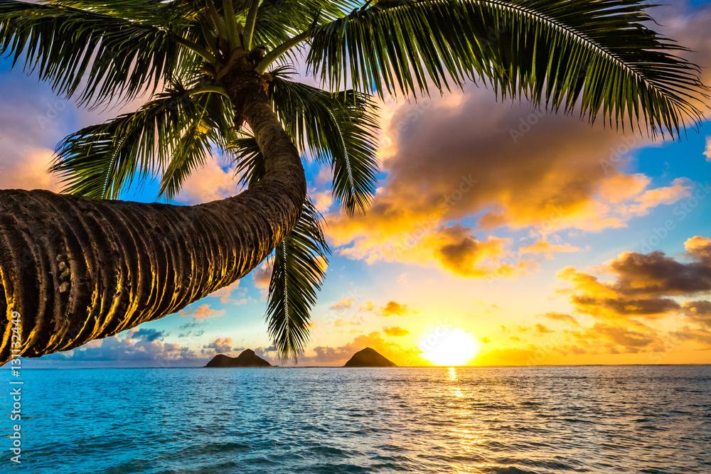 Fototapety, obrazy: Piękny hawajski wschód słońca na plaży Lanikai