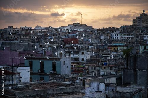 Cuban Sunset Poster