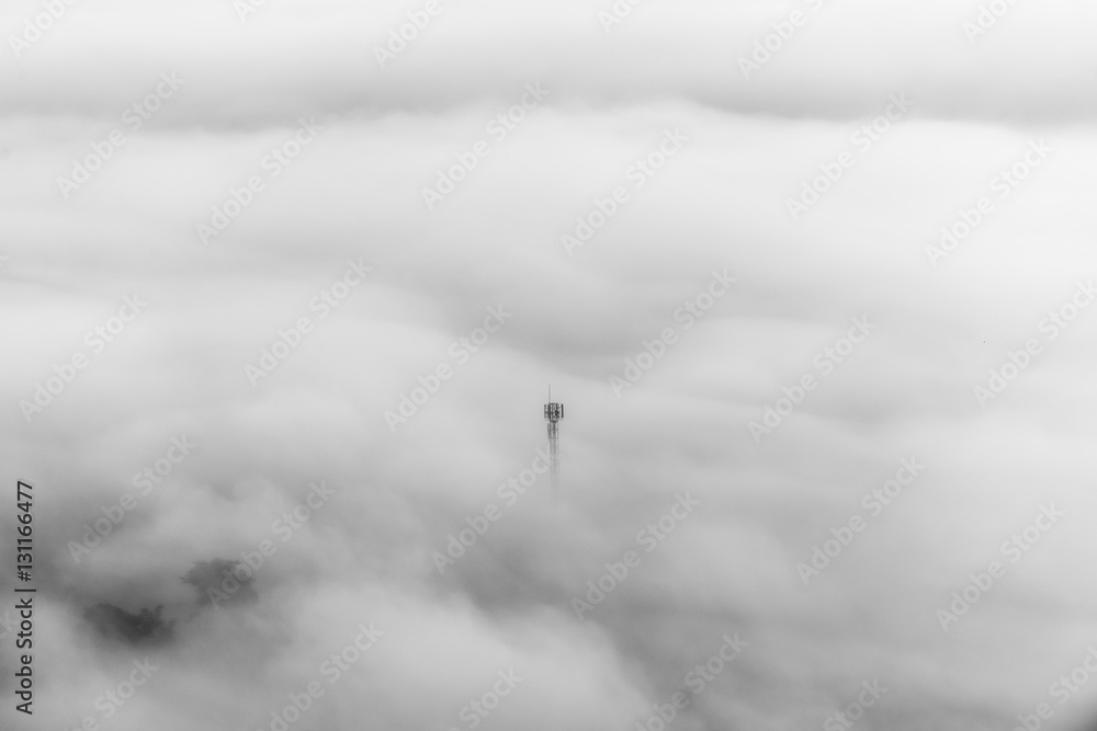 Fototapety, obrazy: Fog over the forest, Black and white tones in minimalist photography