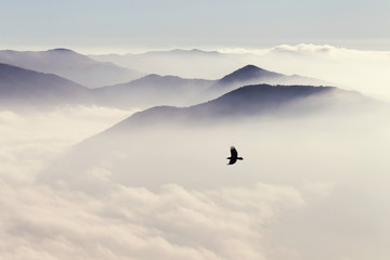 Panel Szklany Góry Silhouettes of mountains in the mist and bird flying in warm ton