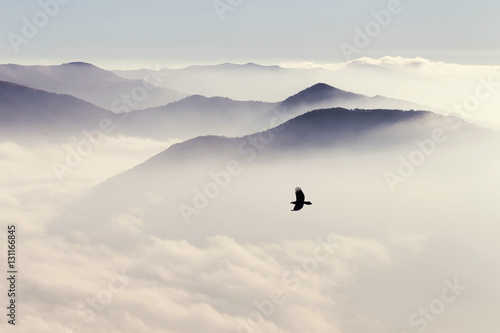 Silhouettes of mountains in the mist and bird flying in warm ton Canvas Print