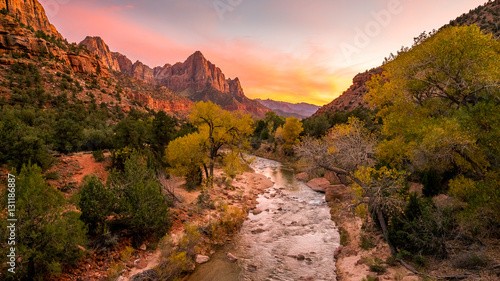 Poster Rivier The rays of the sun illuminate red cliffs and river. Park at sunset. A beautiful pink sky. Zion National Park, Utah, USA