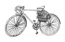 Hand Drawn Vector Illustration - Romantic Bike With Flowers. Sai