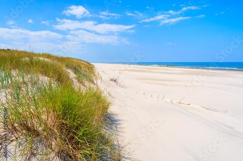 Deurstickers Strand Green grass sand dune on Debki beach, Baltic Sea, Poland