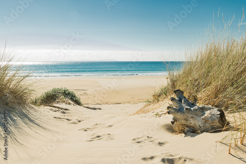 Foto op Canvas Strand Bolonia beach