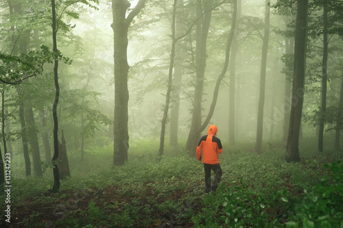 Poster Olive Tourist walking in green foggy forest