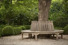 Circular Tree Bench