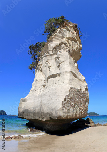 Deurstickers Cathedral Cove unique rock formation at cathedral cove beach