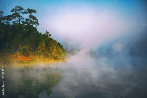 Poster Rivière de la forêt Morning fog on the lake