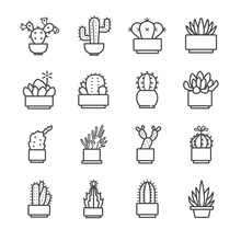 Cactus And Succulent Icons Set