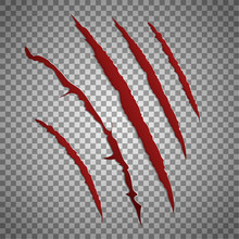 Slash Scratch Set On Transparent Background. Vector Scratching Beast Red Claw Marks