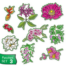 Fashion Patch Set, Badges With...
