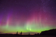 Northern Lights At Great Woods...