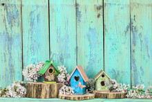 Display Of Colorful Birdhouses By Rustic Wood Background
