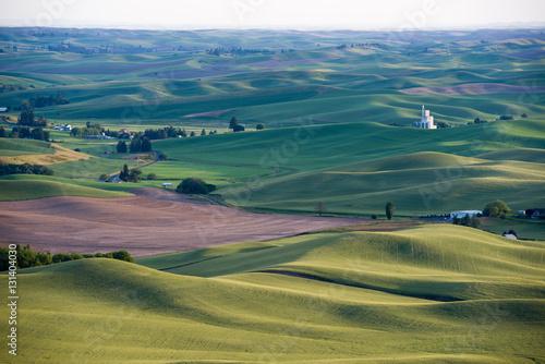 Obraz na płótnie rolling hills of Palouse