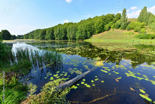 view of the lake's shore in Masuria District, Poland